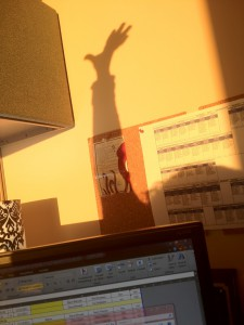 Shadow of a morning stretch.